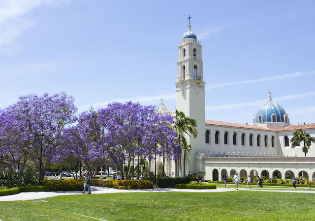 The Immaculata and jacranda trees in bloom on the University of San Diego campus