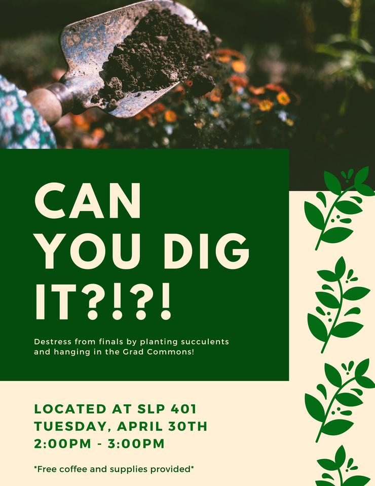 Flyer for DIY Succulents