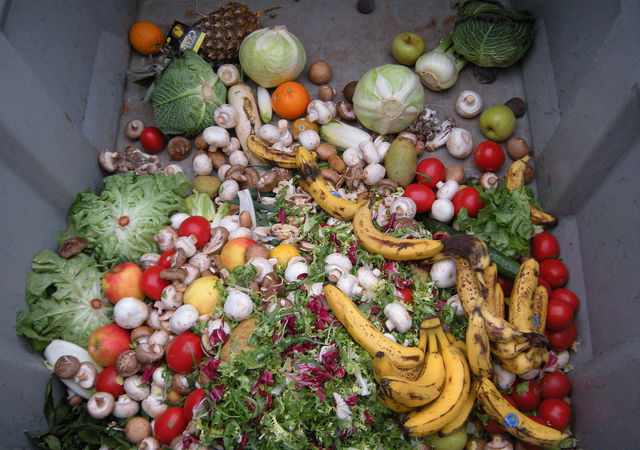 Picture of rotting fruits and vegetables in a grey dumpster