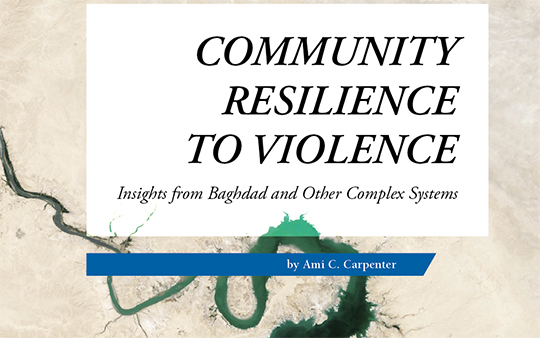 COMMUNITY RESILIENCE TO VIOLENCE