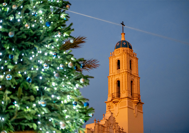 Tree Lighting with Immaculata