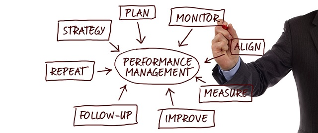 This is an image showing a performance management process.