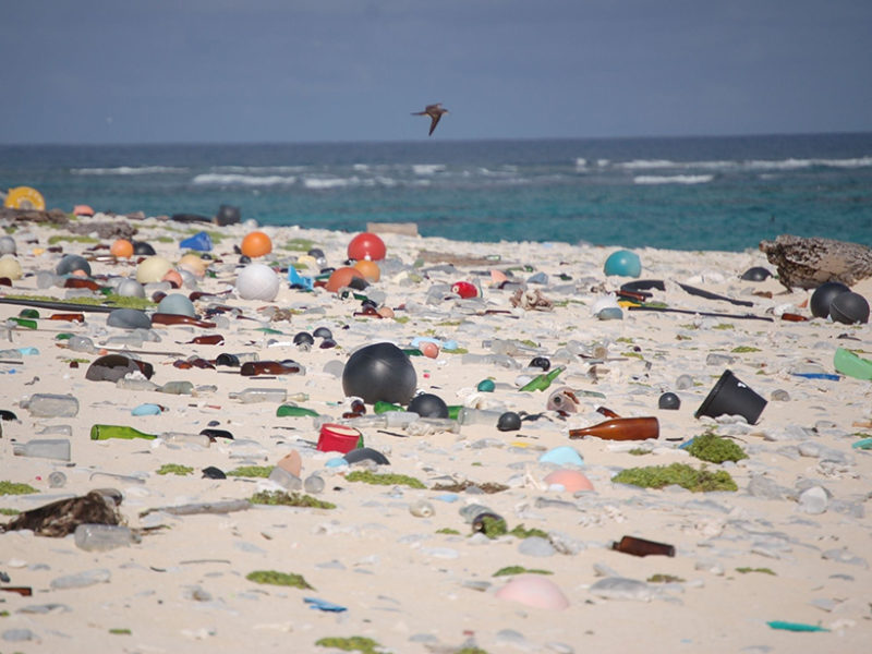 Bill Calls for Dramatically Cutting Plastic Pollution