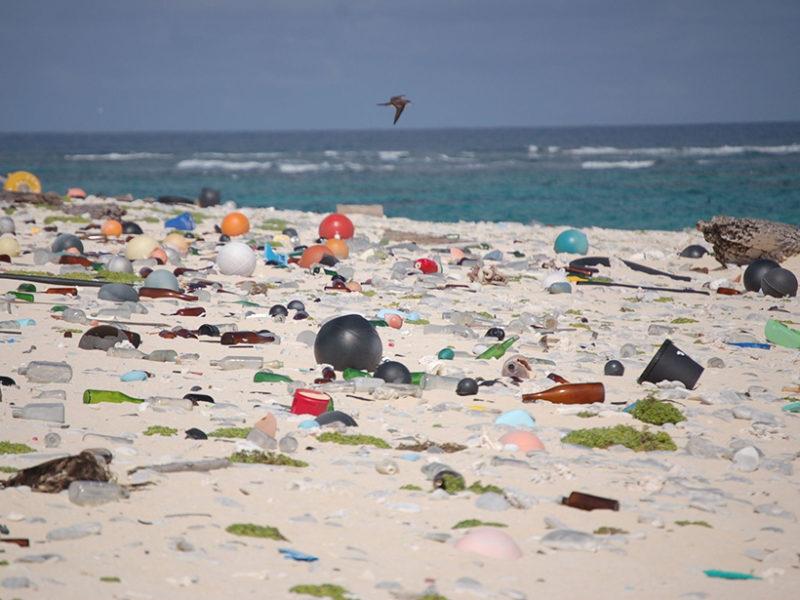 Bill Calls for Dramatically Cutting Plastic Pollution