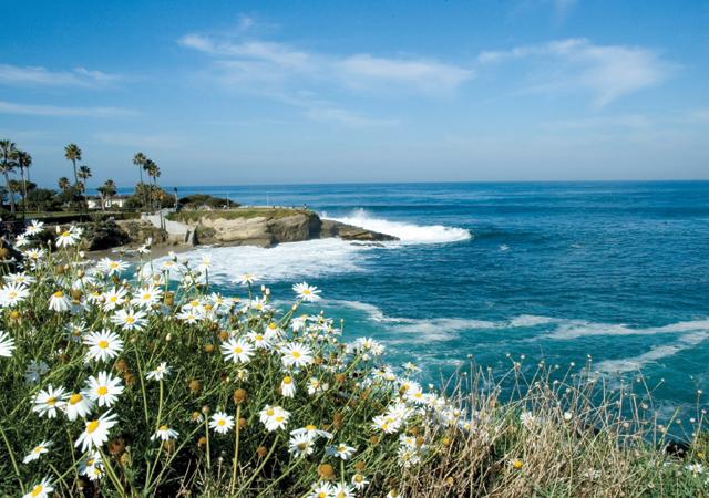 SD Coast