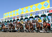 Del Mar Races
