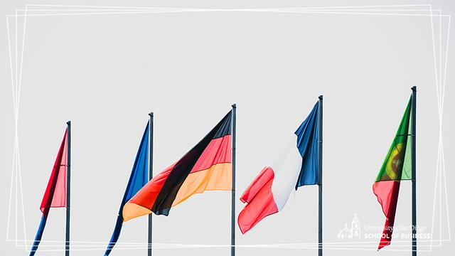 A series of world flags, with the German national flag featured prominently