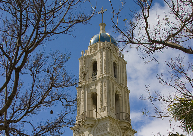 Toreros Together Emergency Fund for Students