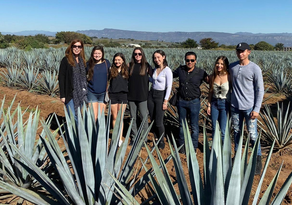 A group of Student International Business Council students from the University of San Diego visits an agave field in Tequila, Mexico.