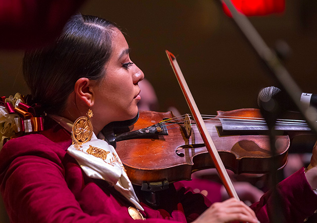 Mariachi violinist in performance