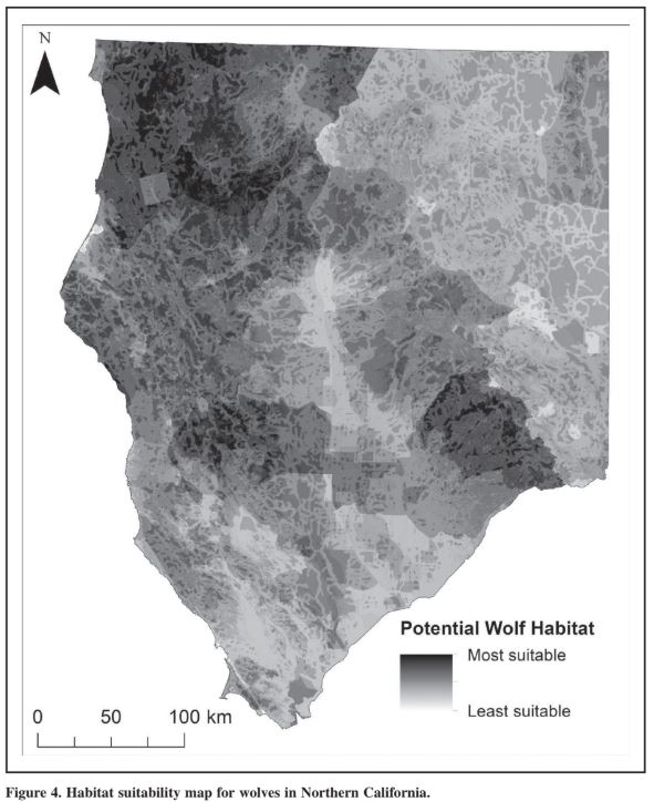 A map that identifies potential wolf habitat in California.