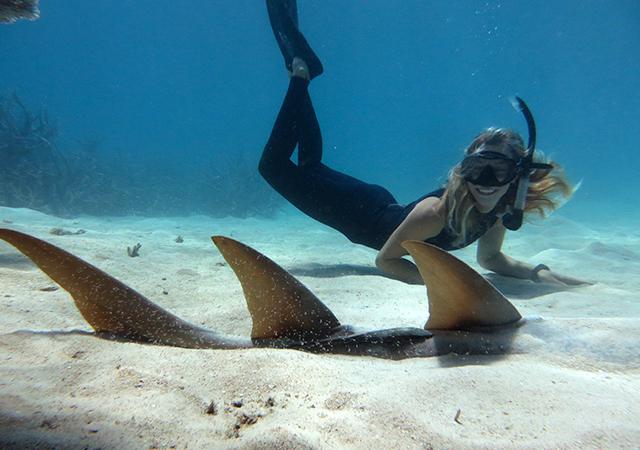 Taylor Simpkins snorkling with a shark