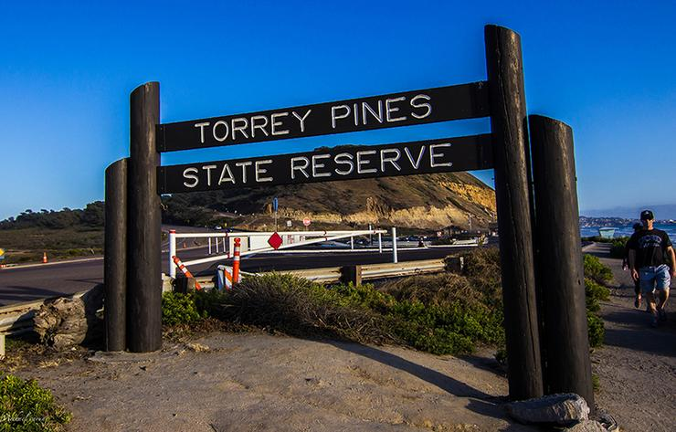 Torrey Pines State Park Sign