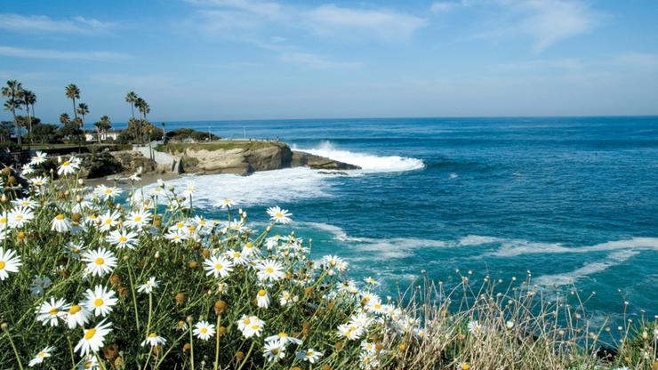 SD Coastline