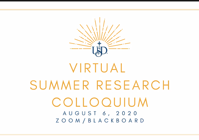 Virtual Summer Research Colloquium 2020