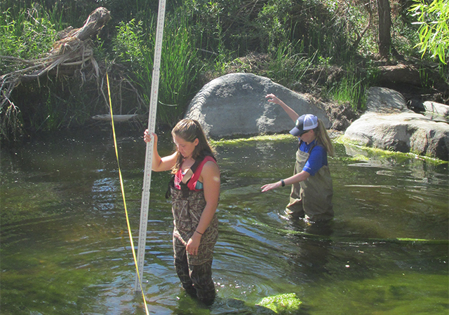 Students standing in body of water conducting research