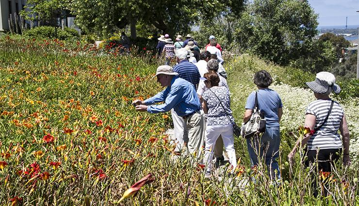 A garden tour of the University of San Diego campus will be one of the many activities for the winter session University of the Third Age participants.