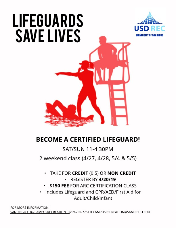 Lifeguards Save Lives(alt)