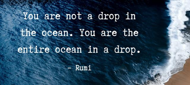 You are not a drop in the ocean. You are the entire ocean in a drop. - Rumi