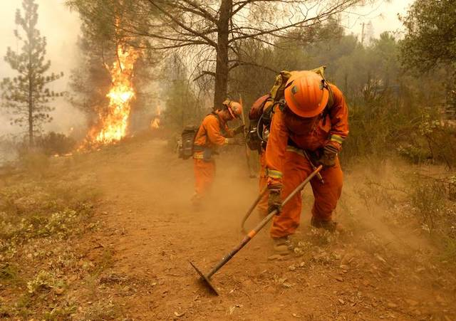 Inmate crews in orange build a containment line ahead of flames in Sheep Ranch, Calif.