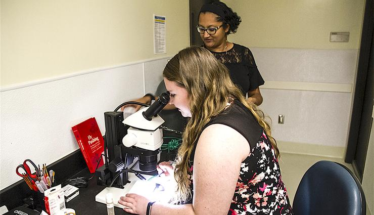 Margaret Driscoll, a senior behavioral neuroscience major, examines fruit flies while in the lab under the direction of Assistant Professor Divya Sitaraman, PhD.