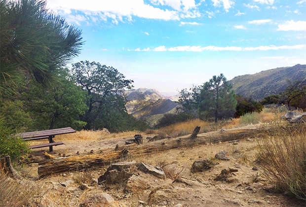 a photograph of a picnic bench and the Mt Laguna landscape