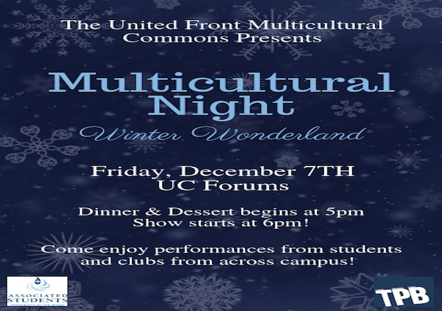Multicultural Night Flyer