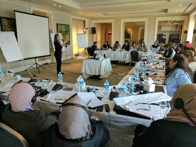 Dr. Irmer conducts high-level training in Cairo to peacebuilders of Arab Nations