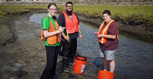 Ric DeSantiago, middle, did hands-on fieldwork research this summer.