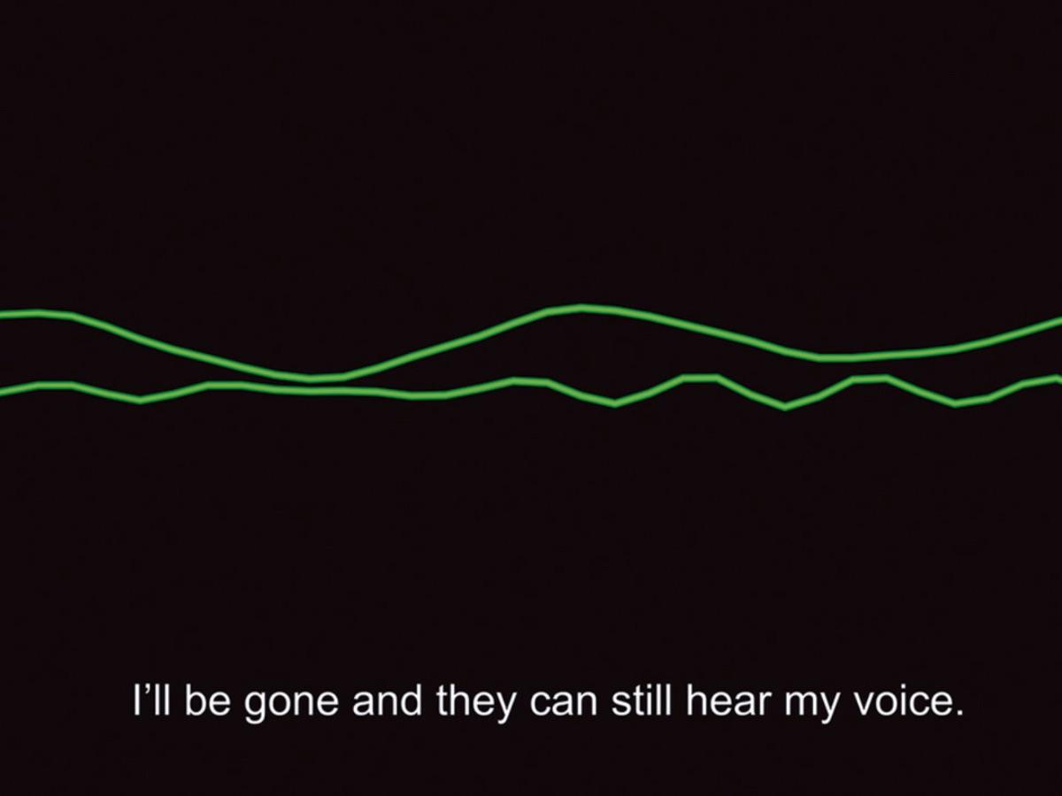 waveform of speaker